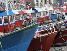 Pesca in Romagna